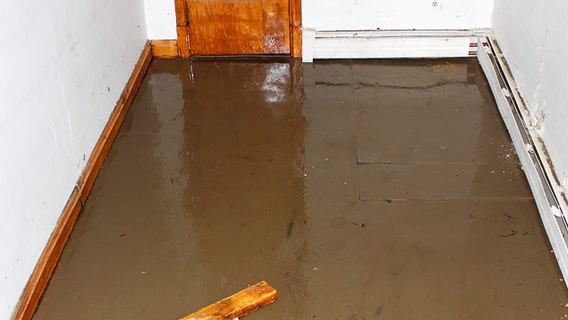 thumbnail for How to Identify if Your Basement is Flooded